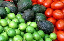 agroindustria-importacion-exportacion-agentes-aduanales-oam